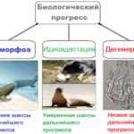 Биологический прогресс - влечёт ли увеличение видового разнообразия?